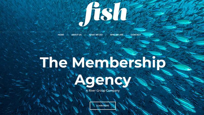 Fish Content Agency launches
